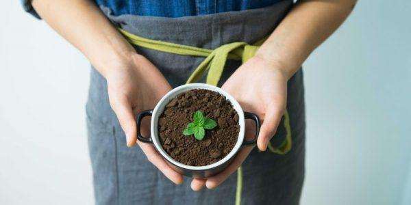 градинарство