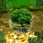 """Програма """"Екоучилища"""" (Eco-Schools) - най-голямата глобална програма за устойчиви училища!"""